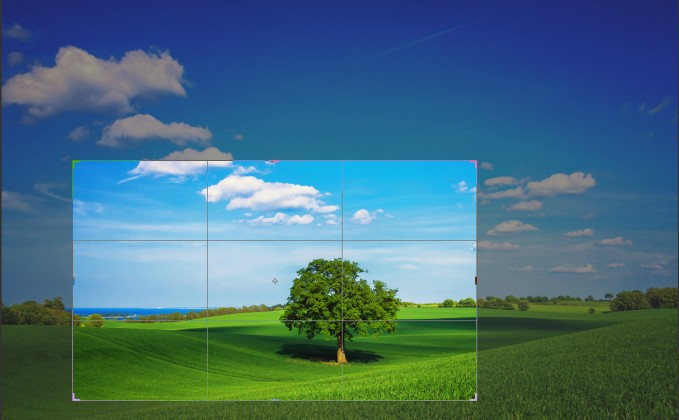 15 Easy Tips for Cropping Photos Like a Pro
